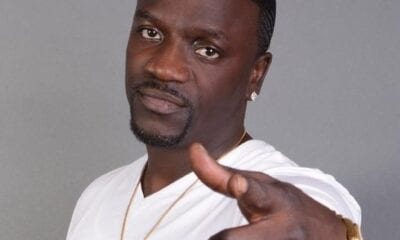 Akon net worth 2020