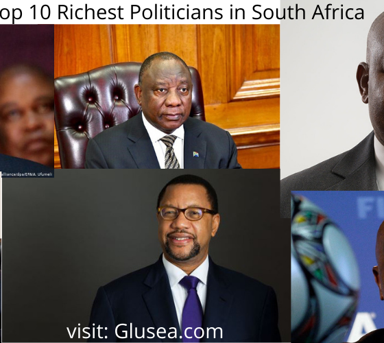 Top 10 Richest Politicians in South Africa
