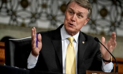 David Perdue net worth