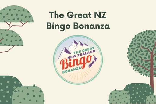 The Great NZ Bingo Bonanza: About The Game